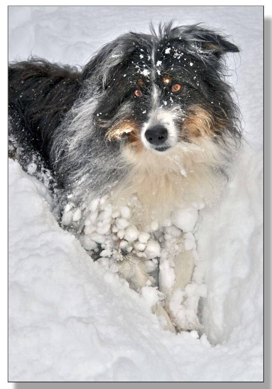 boules-de-neige