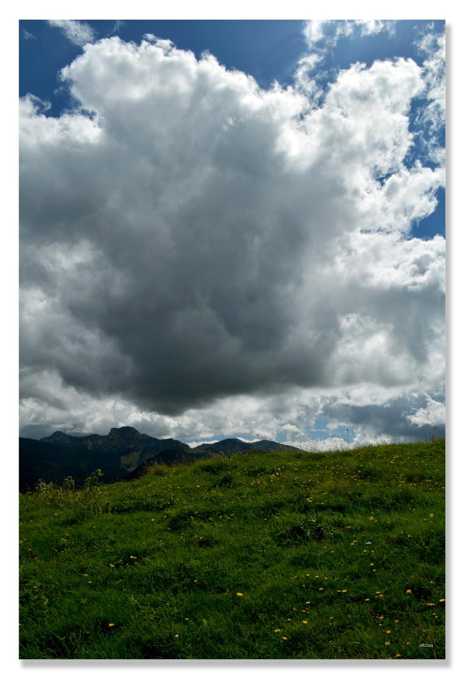 nuagew