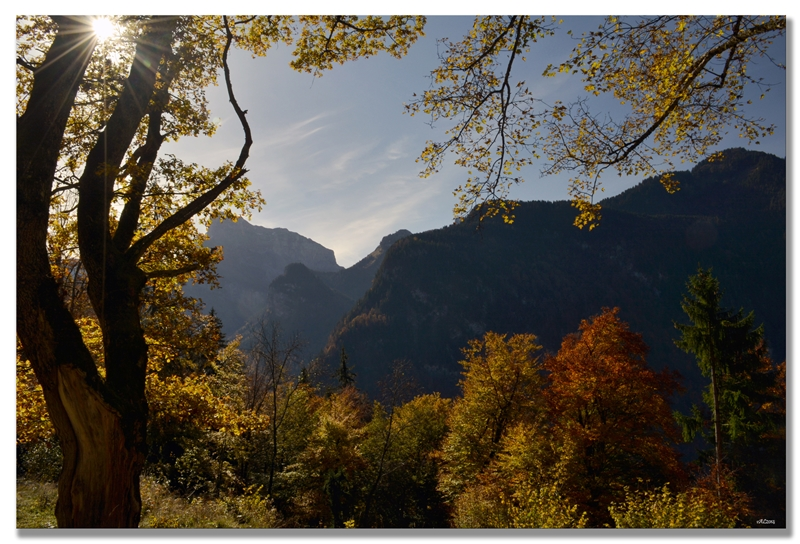 soleil automne